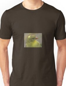 Bird that wanted in my house T-Shirt
