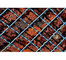 Vintage net background of rusty iron net Photographic Print
