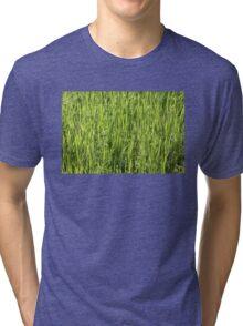 Green grass on a summer field Tri-blend T-Shirt