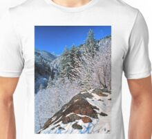 WINTER,NEWFOUND GAP* Unisex T-Shirt