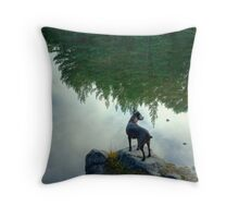 Tarn and the Topsy Turvy Trees Throw Pillow