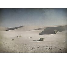 I Was Lost in the Desert Photographic Print