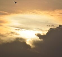 Sky by Jagadeesh Sampath