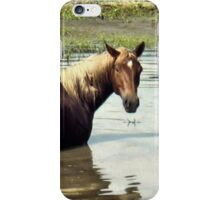 """""""Horses with Attitude, No. 2, """"What You Lookin' At?'""""... prints and products iPhone Case/Skin"""