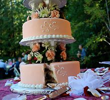 Good Start to Marriage - Cake by SparrowPhoto