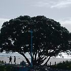 Tree on Mount Maunganui Beach by Samantha Coe