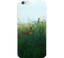 Poppies, poppies, poppies iPhone Case/Skin