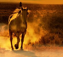 Runaway by Jeanne  Nations