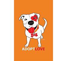 Adopt Love Photographic Print