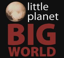 Little Planet - Big World by David and La Jeana Bodo