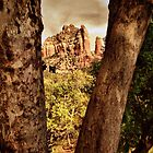Sedona Red Rock by Angelica Aguilar