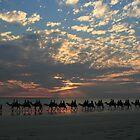 Camel Train by BarkingGecko