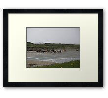 Nude Bathers, Innisfree Island off Donegal Ireland Framed Print