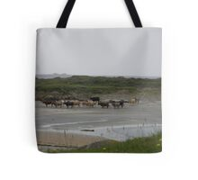 Nude Bathers, Innisfree Island off Donegal Ireland Tote Bag