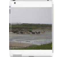 Nude Bathers, Innisfree Island off Donegal Ireland iPad Case/Skin