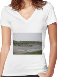 Nude Bathers, Innisfree Island off Donegal Ireland Women's Fitted V-Neck T-Shirt