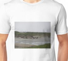 Nude Bathers, Innisfree Island off Donegal Ireland Unisex T-Shirt