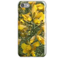 The Scent Of Sunshine iPhone Case/Skin