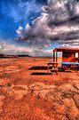 Highway 89 - Dinosaur Tracks by LudaNayvelt