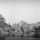 Snow at Hampstead Heath by Ben Walker