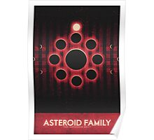 The Asteroid Belt - Asteroid Family Poster