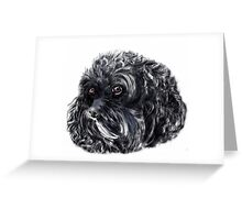 "Cute 'Charlie"" a King Charles Spaniel/Poodle Greeting Card"