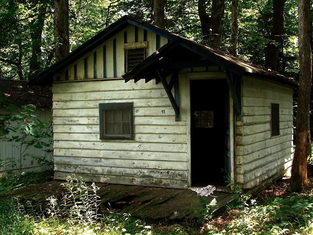Cabin 11 by greycat