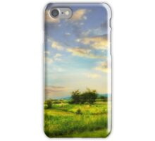 Enchanted Valley iPhone Case/Skin