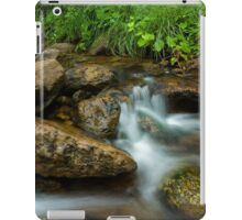 A Restful Place iPad Case/Skin