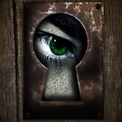 There's a Monster in My Closet! (green eye) by BluAlien