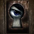 There's a Monster in My Closet! (blue eye) by BluAlien