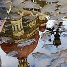 Step into the Taj  by Shubd