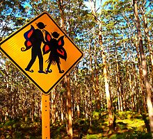 """Forest Elves"" Western Australia by wildimagenation"
