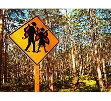 """Forest Elves"" Western Australia Photographic Print"