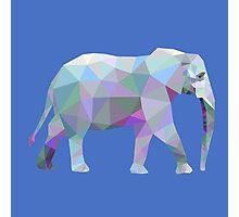 Geometric Elephant Photographic Print