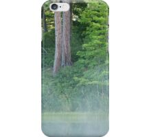 Lake Shore Forest iPhone Case/Skin