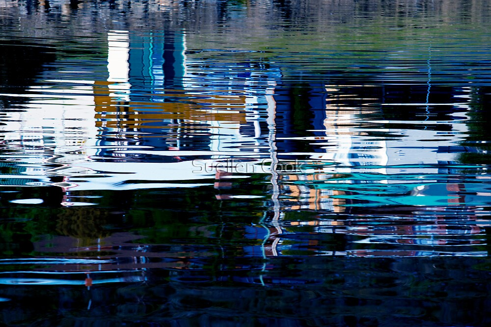 Reflecting on the future by Suellen Cook