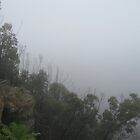 Misty views from the Blue Mountains by smiles15