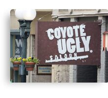 Coyote Ugly. Canvas Print