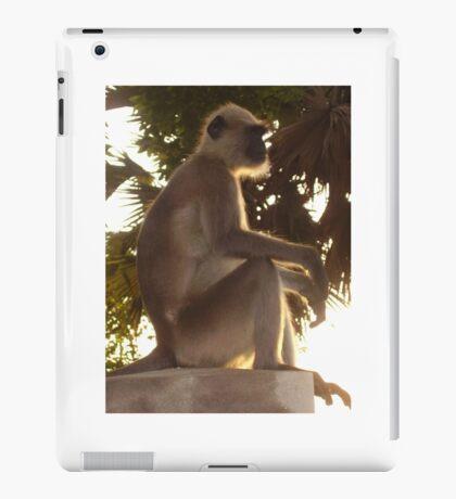 Monkey Magic iPad Case/Skin