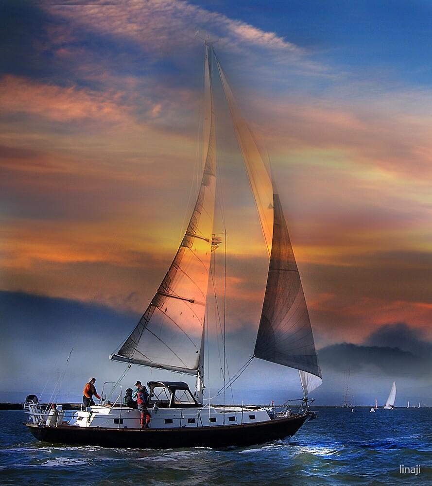 One Sail at Sunset by linaji
