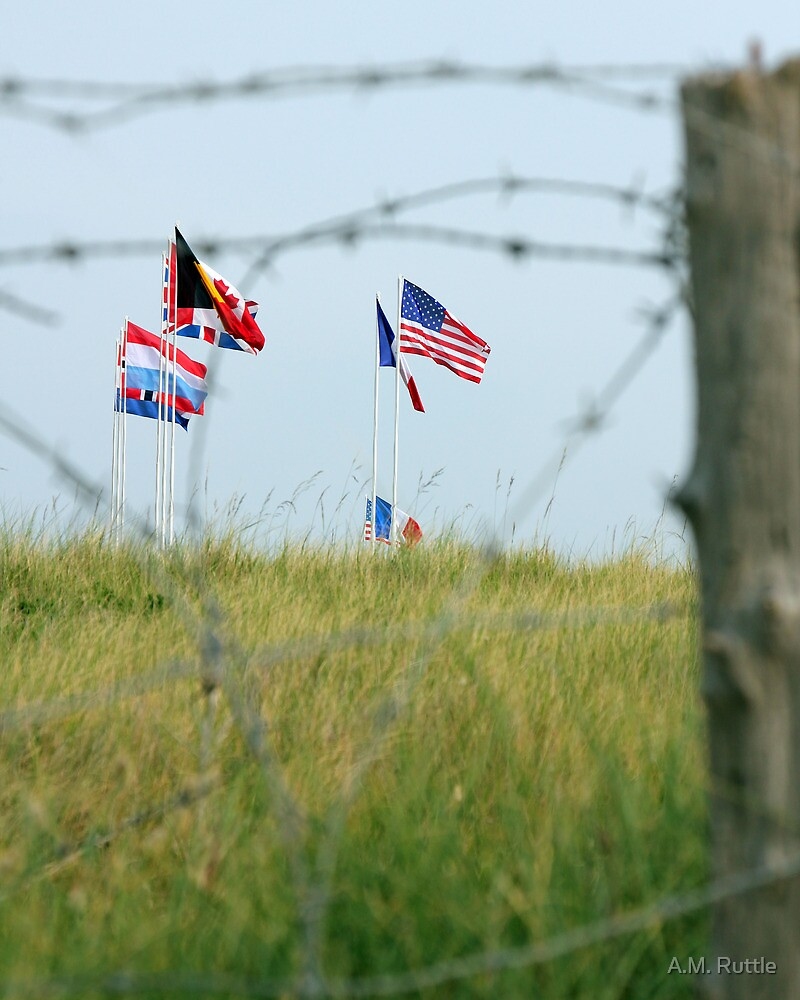 Utah Beach - Freedom Is Worth Fighting For by A.M. Ruttle