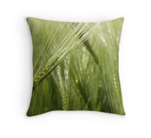 Unfolding before your eyes Throw Pillow