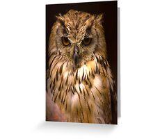 Owl #2 Greeting Card