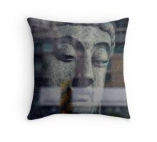 Do not dwell in the past, do not dream of the future, concentrate the mind on the present moment. Buddha  Throw Pillow