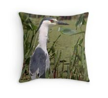 Hunter Wearing White / Black Crowned Night Heron Throw Pillow
