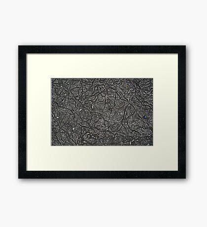 Snail trail Framed Print