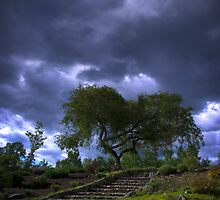 Into to the Storm by PrecisionFX