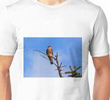 Juvenile Merlin Unisex T-Shirt