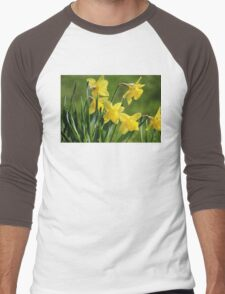 Daffodil Dreams Men's Baseball ¾ T-Shirt